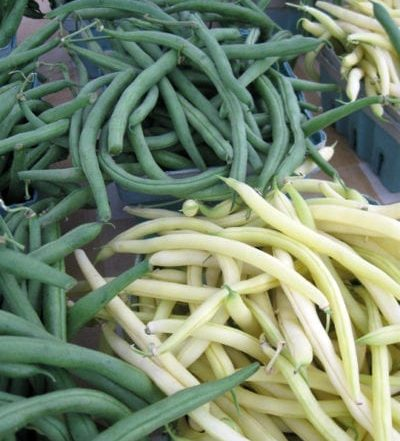 yellow and green snap beans