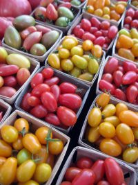 boxes of cherry tomatoes