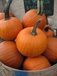 basket of small pie pumpkins