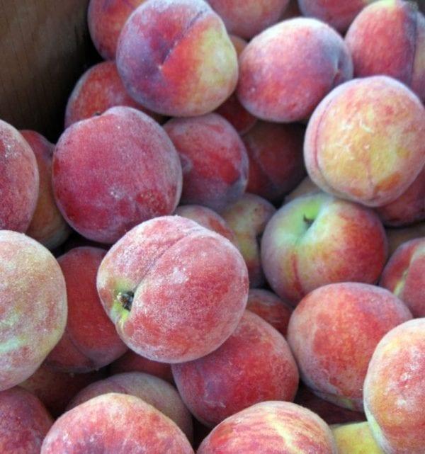 PeachesBroadRippleFarmersMarket