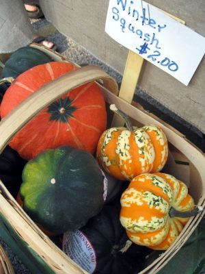 basket of winter squashes with sign