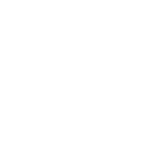 Broad Ripple Lights Up Logo