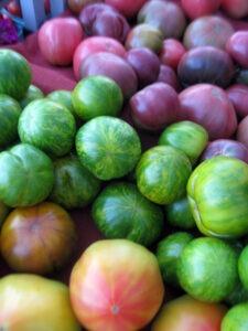 Full Hand Tomatoes