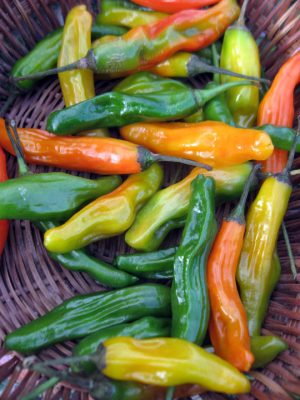 basket of hot peppers green orange and yellow