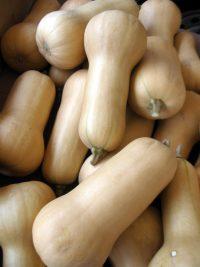 butternut squashes