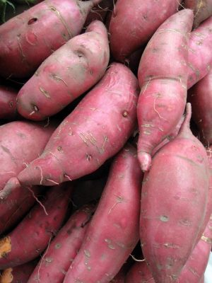 a pile of raw sweet potatoes