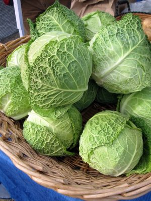 basket of cabbage heads