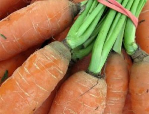 Meals from the Market: Captivating Carrots