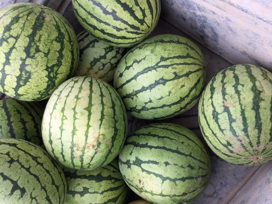 What's Cooking: No-Cook Melon Magic