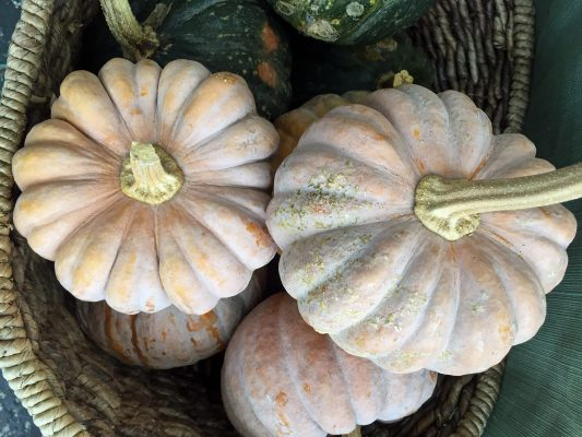 What's Cooking: A Way with Winter Squash